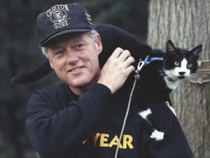 bill clinton with socks the presdiential cat