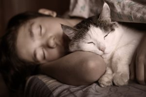 do cats know when you're sleeping